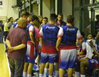 """Club Basket Frascati (serie C Gold/m), Cupellini: «Contento del mio primo anno """"tra i grandi""""»"""