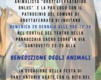 GROTTAFERRATA, DOMENICA LA BENEDIZIONE DEGLI ANIMALI