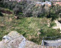 Frascati, iniziati i lavori per la riapertura  del Parco archeologico di Cocciano
