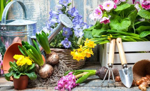 Giardino, orto, campagna, animali: piaceri da coltivare. A Verdi Passioni prove di primavera, il 2 e 3 marzo a Modena