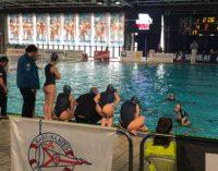 F&D H2O Velletri battuta in trasferta: Florentia vince 9-4