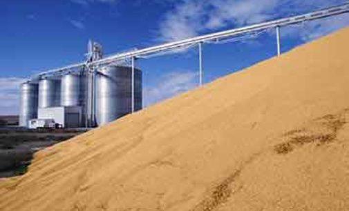 Agricoltura frammentata e scorte scarse aumentano l'import per l'industria di trasformazione