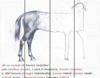 "Teatro Trastevere – ""ASSISTANTS"""
