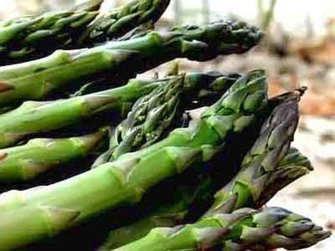"""Canino celebra il """"mangiatutto"""", l'asparago verde vanto del territorio – 30/31 marzo"""