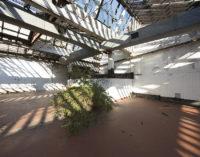 BienNoLo 2019 | Nasce la Biennale d'arte contemporanea di NoLo, Milano