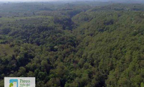 Parco Valle del Treja – Il Parco aiuta a mitigare le emissioni di CO2