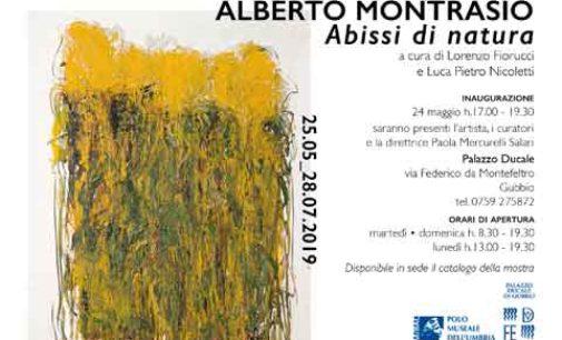Al Palazzo Ducale di Gubbio la personale di Alberto Montrasio