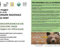 DOMENICA 19 MAGGIO GIORNATA NAZIONALE OASI WWF