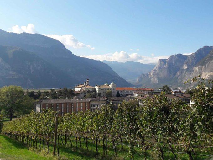 3° MS Wine Day, focus sulle nuove conoscenze nel settore della chimica del vino