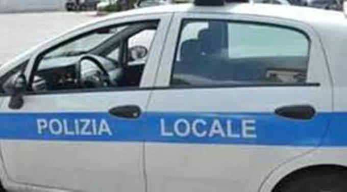 FOCUS SU AUTOTRASPORTO NAZIONALE E RUOLO DELLA POLIZIA LOCALE