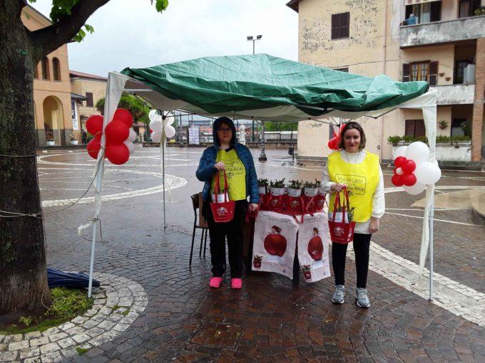 Lariano  – Grande successo per l'evento Le Rose di Santa Rita