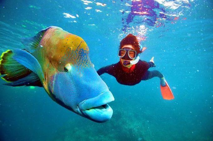 La biologa marina Mariasole Bianco  lancia il progetto #ilmareiniziadaqui  all'ONU in occasione del World Oceans Day  New York, 8 giugno 2019