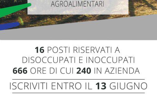 Processi produttivi agricoli ed agroalimentari, al via corsi gratuiti a Caprarola