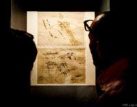 Leonardo e Vitruvio: oltre il cerchio e il quadrato