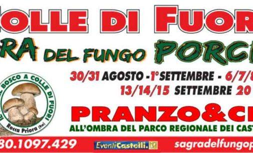 """Colle di Fuori– """"Sagradel fungo Porcino"""""""