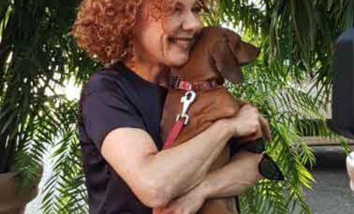 Parte la campagna Ordine Medici Veterinari e Polizia di Stato per viaggiare in sicurezza con i propri animali