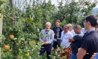 1000 agricoltori agli incontri tecnici estivi FEM