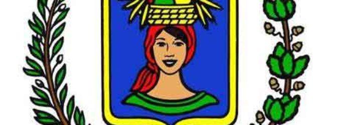 45° anniversario del gemellaggio Pomezia – Singen