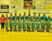"""Club Basket Frascati, C Gold verso l'esordio. Serino: """"Il Basket Roma? Subito un bel test"""""""