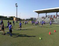 Ssd Colonna, una gustosa novità: a dicembre riaprono le iscrizioni della Scuola calcio