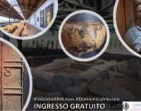 GRATIS prima domenica dicembre – Museo Civico Archeologico Lavinium