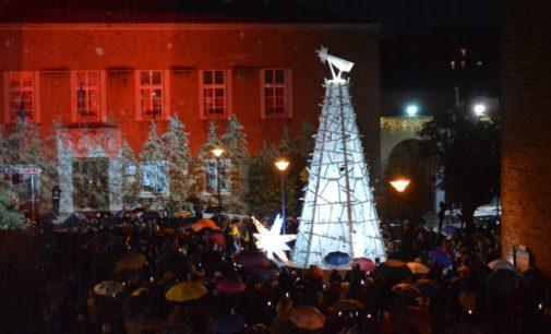 Natale d'Amore, Pomezia accende i suoi alberi