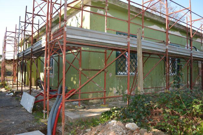 Nuovo parco canile a Pomezia, lavori in corso