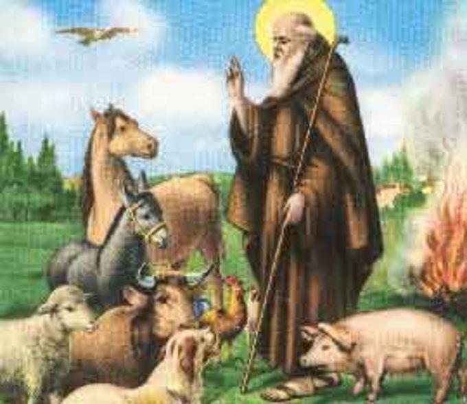Sant'Antonio Abate ed il riequilibrio del rapporto uomo natura animali…