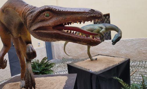 """La mostra """"Dinosauria. Le impronte di Sezze"""" prorogata fino al prossimo 29 febbraio"""