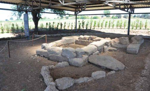 Visita Museo e Area archeologica domenica 19 gennaio