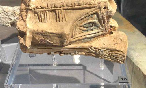 Una delegazione Lanuvina in visita al Museo Archeologico di Napoli