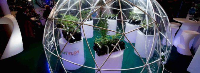 Pratiche ecologiche in mostra a Canapa Mundi 2020