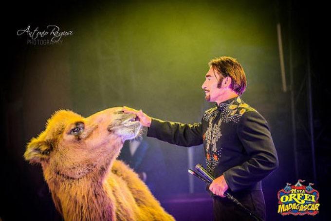 Ancona: dopo 5 anni torna il Maya Orfei Circo Madagascar
