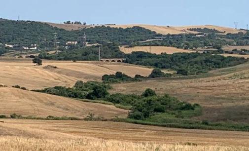 Italia Nostra Etruria e Forum Ambientalista: presentato accesso agli atti per il progetto di una mega pala eolica