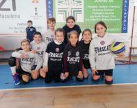 """Volley Club Frascati, De Gregorio: """"Il minivolley e le Under 12 e 13? Sono stra-soddisfatto"""""""