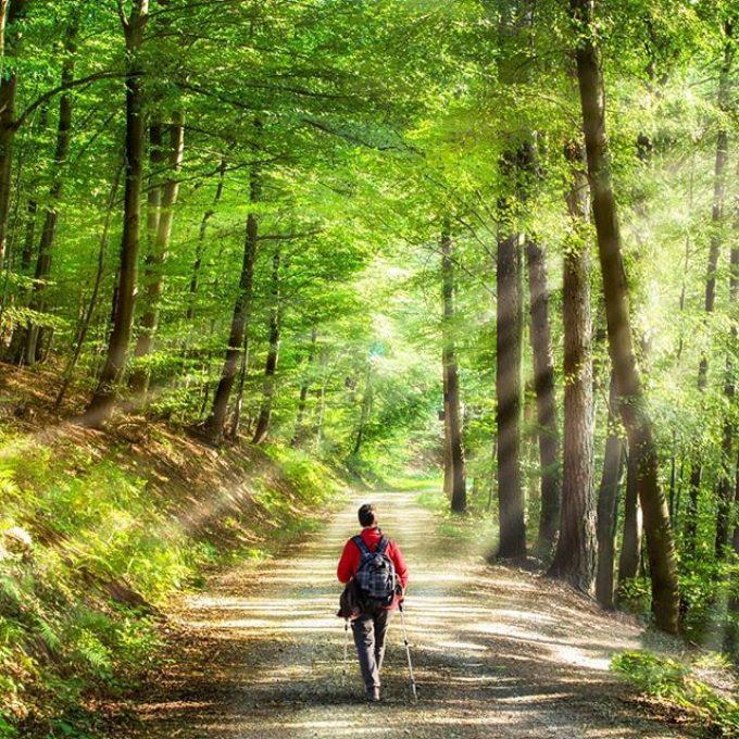 1 Milione di Km a piedi in 4 giorni – La sfida di ViaggiAmo Italia per ripartire distanti ma insieme