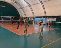 """Il Volley Club Frascati è ripartito, il ds Graziani: """"Una scelta dettata soprattutto da tre motivi"""""""