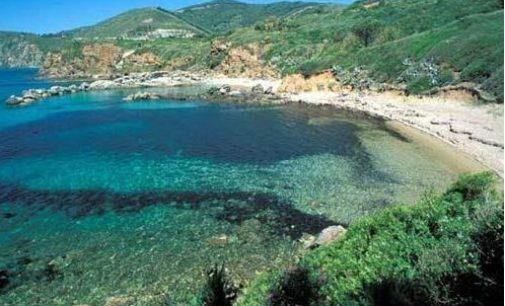 Viaggio all'Isola d'Elba: informazioni, curiosità e spiagge più belle