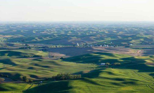 EUROPA E ITALIA PIÙ ATTENZIONE E FONDI PER UN VERO RILANCIO DEL SETTORE GREEN.