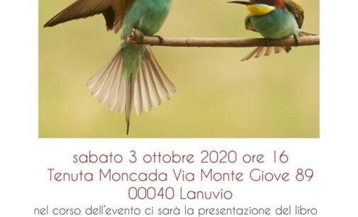 Pomeriggio d'immagini e poesia con Marco Branchi e Tiziana Galletti