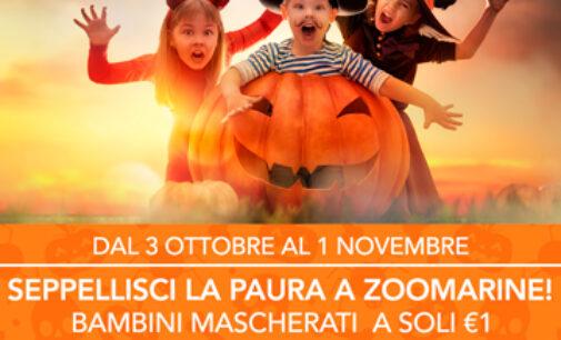 La Magia di Halloween arriva a Zoomarine. Dal 3 ottobre al 1° novembre, un mese di attività e sorprese a tema