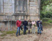 Roma/Monte San Biagio(LT). Via Francigena salva platani