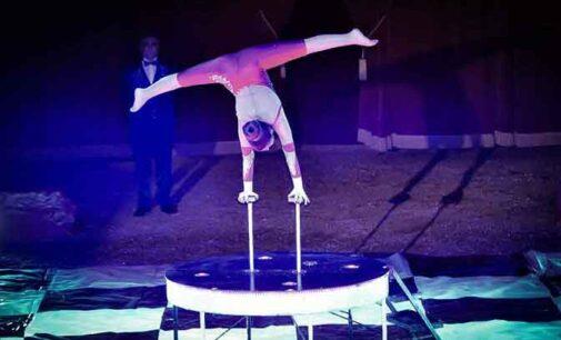 A Teramo il grande show circense del Maya Orfei Circo Madagascar
