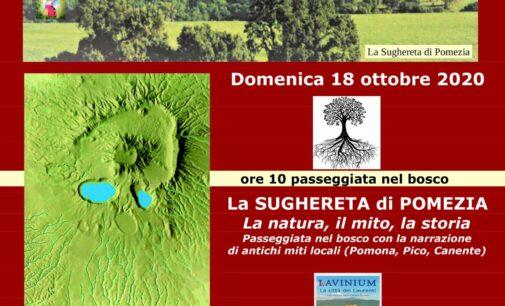 Riserva Naturale Regionale della Sughereta di Pomezia. Cose mai viste