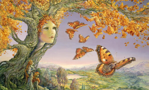 Le belle Befane e l'Epifania della Natura…