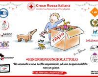 """""""Io non sono un giocattolo""""la campagna di Natale della Croce Rossa di Roma a favore degli animali"""