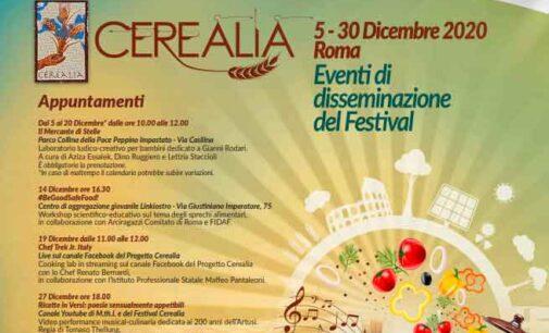 Parte oggi il Festival Cerealia, la festa dei cereali e del Mediterraneo