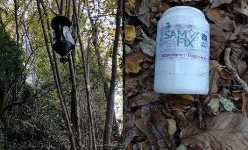 Parco – Ultimata la sessione di monitoraggio 2020 del progetto LIFE SAMFIX