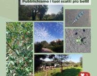 #naturapomezia, le bellezze del territorio viste dai vostri occhi