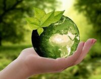 Ambiente: la svolta green dell'industria